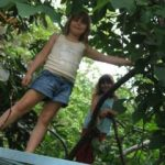 Climbing trees - a childhood joy